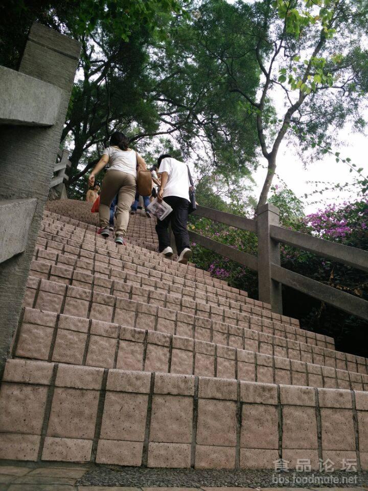 百步梯?.jpg