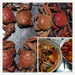 29.食微小学生-做个小螃蟹吧.jpg