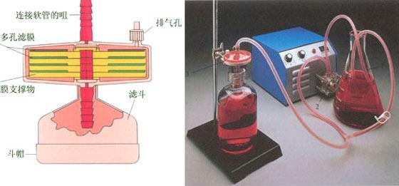 固定滤膜的装置