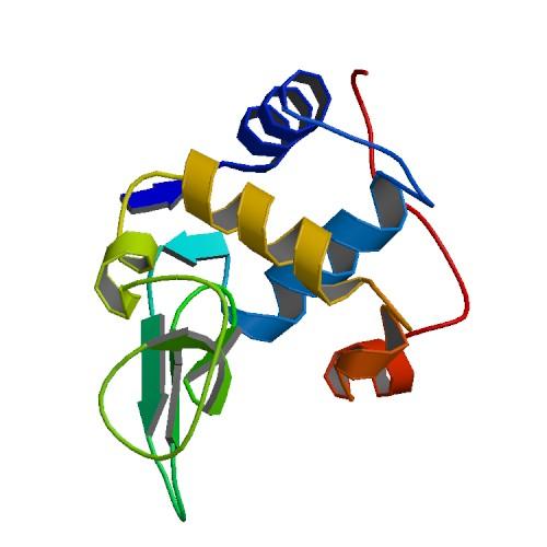 蛋白三级结构
