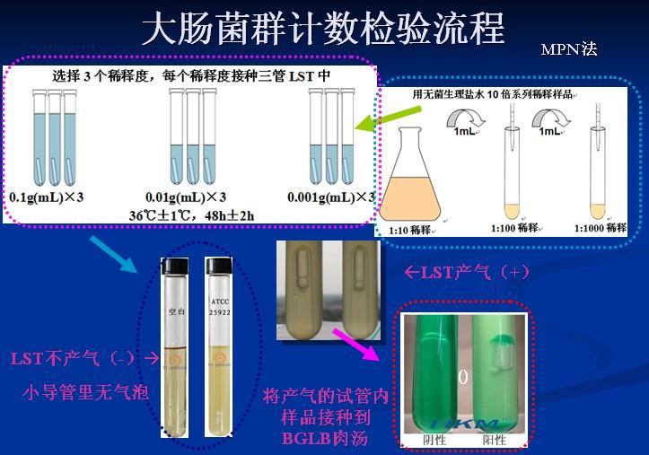 大肠菌群检验流程.jpg
