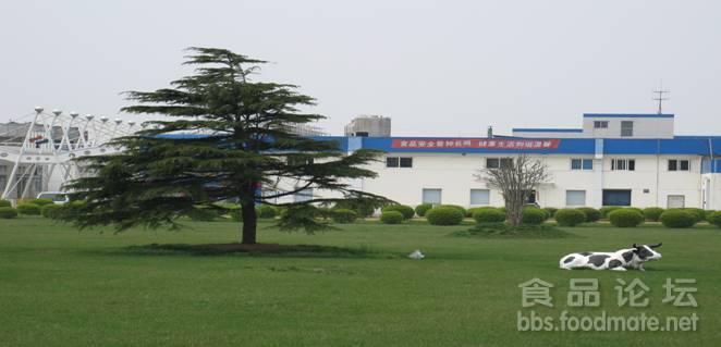 食品厂的钢结构厂房外面刷什么颜色好看?